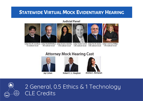 Statewide Virtual Mock Evidentiary Hearing
